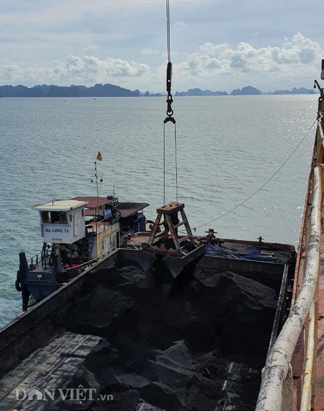 XNK qua cảng biển ở Quảng Ninh đang dần mờ nhạt - Ảnh 3.
