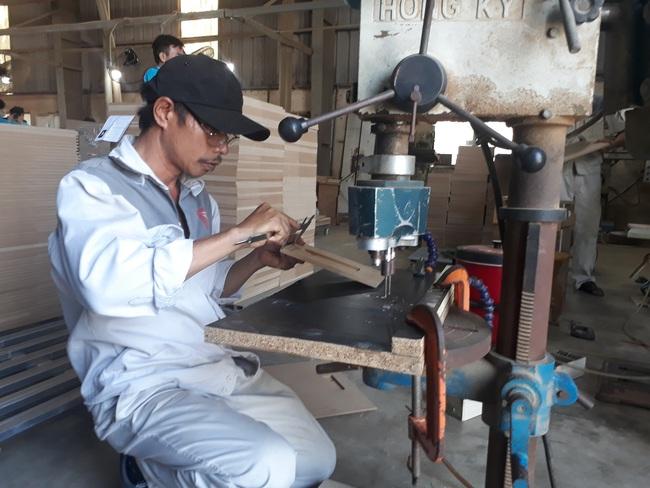 """FLEGT """"mở đường"""", gỗ Việt rộng cửa vào EU - Ảnh 1."""
