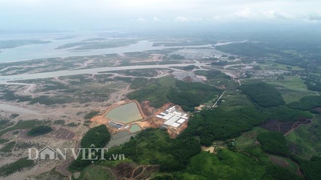 Dự án nuôi tôm công nghệ cao ở Quảng Ninh: Sản xuất 1 tỷ con giống trong năm 2020 - Ảnh 1.