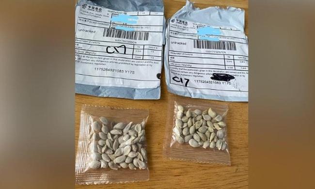 6 bang Mỹ cảnh báo hạt giống lạ gửi từ Trung Quốc  - Ảnh 1.