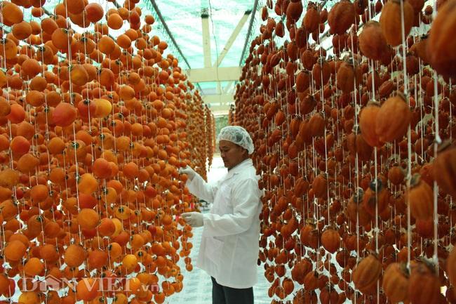 Dâu tây và hồng ăn trái Đà Lạt phải cạnh tranh gay gắt với hàng Trung Quốc - Ảnh 7.