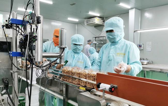 Đầu tư mạnh vào lĩnh vực nông nghiệp, ông Nguyễn Duy Hưng gặp khó vì… Covid-19 - Ảnh 1.