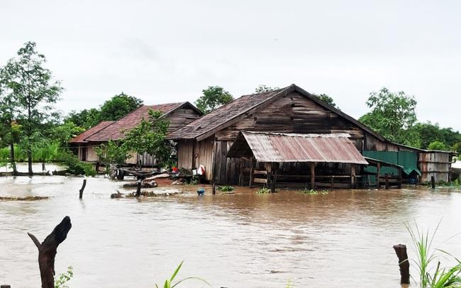 Đắk Lắk: Một huyện mất hơn 50 tỷ đồng do mưa - Ảnh 2.