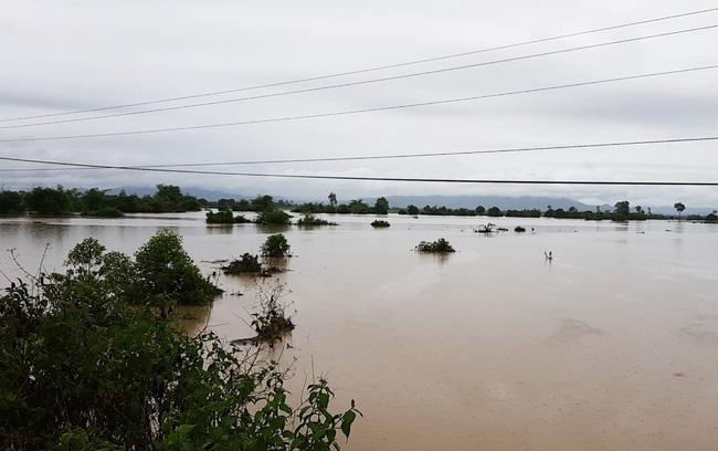 Đắk Lắk: Một huyện mất hơn 50 tỷ đồng do mưa - Ảnh 3.