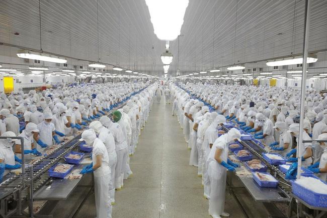Cổ phiếu ngành thủy sản giảm tốc trước làn sóng lây nhiễm Covid-19 thứ 2 - Ảnh 2.