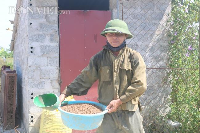 Nuôi cá chép lai, nông dân Thanh Hóa lời 150 triệu/ha - Ảnh 8.