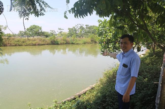 Nuôi cá chép lai, nông dân Thanh Hóa lời 150 triệu/ha - Ảnh 4.