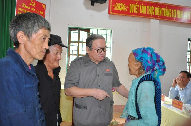 Chủ tịch Hội ND Việt Năm thăm trại bò vàng trăm triệu ở huyện nhiều đá nhất Việt Nam - Ảnh 2.
