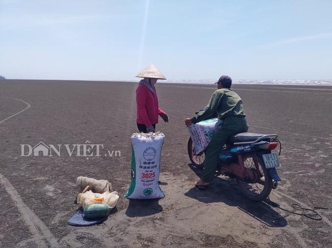 Nam Định: Hàng chục tàu hút cát uy hiếp Cồn Mờ - Ảnh 2.