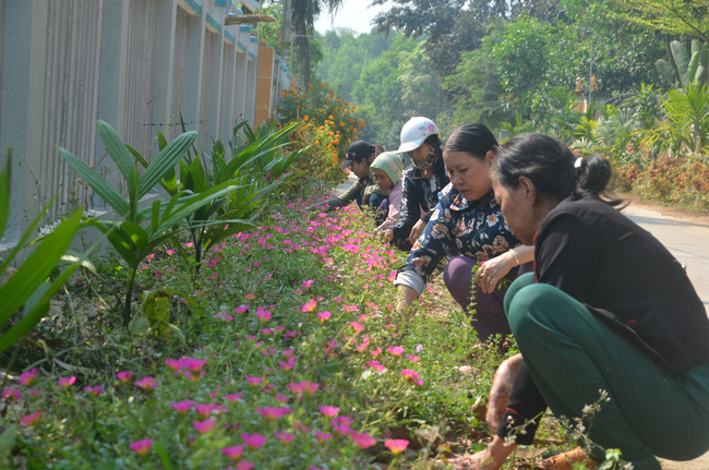 Quảng Ngãi: Lan tỏa Chương trình xây dựng nông thôn mới - Ảnh 3.