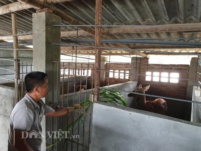 Mô hình nuôi hươu sao lấy nhung và sinh sản của gia đình anh Đẩu xã Thanh Minh (thành phố Điện Biên Phủ, tỉnh Điện Biên) là một mô hình mang lại hiệu quả kinh tế cao.