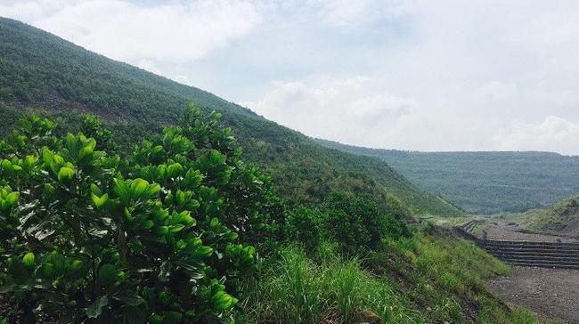 Mục tiêu trở thành ngành sản xuất xanh, TKV mạnh tay chi 1.000 tỷ đồng để bảo vệ môi trường  - Ảnh 1.
