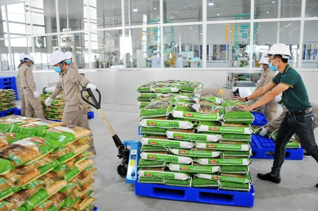 """EVFTA có hiệu lực, sản phẩm gạo nhà ông Nguyễn Duy Hưng liền có """"vé vip"""" vào Châu Âu - Ảnh 1."""
