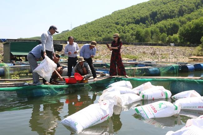 Quảng Ngãi: Nuôi cá to bự trong hồ chứa thủy lợi, nhiều nông dân miền núi khấm khá - Ảnh 3.