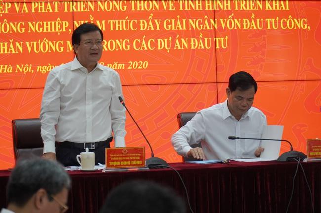 Phó Thủ tướng Trịnh Đình Dũng: Ưu tiên vốn đầu tư công cho công trình ngăn mặn, điều tiết nước - Ảnh 1.