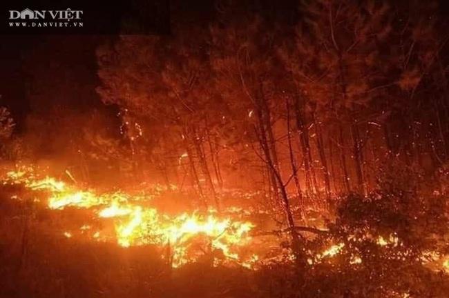 Đêm trắng, đổ máu ngăn những cánh rừng cháy đỏ   - Ảnh 2.