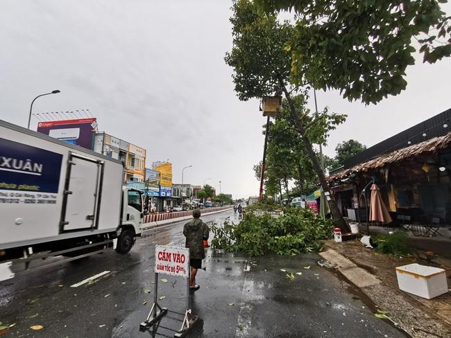 Gió mạnh trong cơn mưa lớn ở Cần Thơ: Tốc mái 6 căn nhà, nhiều cây xanh đổ ngã - Ảnh 1.