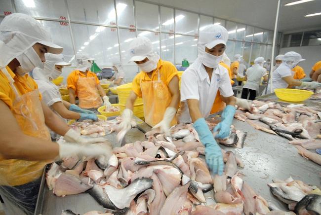 Xuất khẩu thủy sản giảm mạnh mùa covid-19 - Ảnh 1.