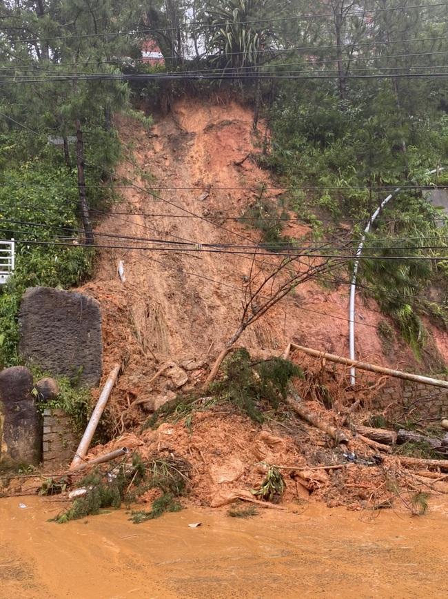 Đà Lạt: Nhiều cây xanh gãy đổ do ảnh hưởng cơn bão số 2 - Ảnh 5.