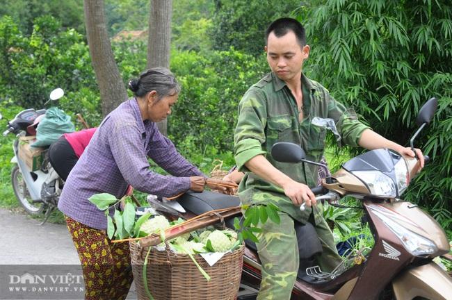Lạng Sơn: Kết nối tiêu thụ sản phẩm Na Chi Lăng và các sản phẩm OCOP - Ảnh 1.