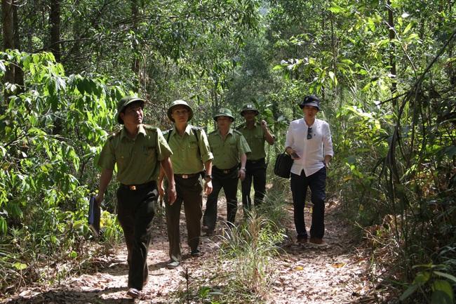 Băng núi giữa mùa khô giữ rừng xứ Nghệ - Ảnh 1.
