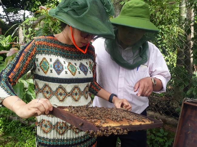 Nữ 9X thành tỷ phú nhờ nuôi ong mật
