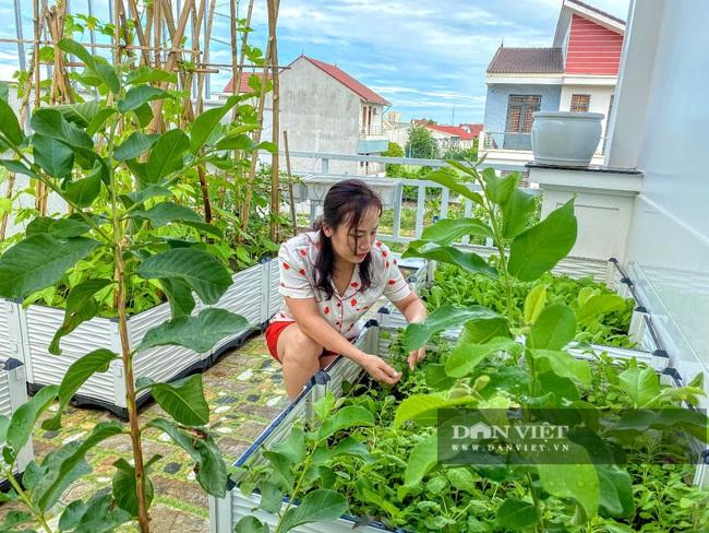 Làm vườn trên sân thượng, nữ kế toán phục vụ rau xanh, sạch quanh năm cho gia đình - Ảnh 1.