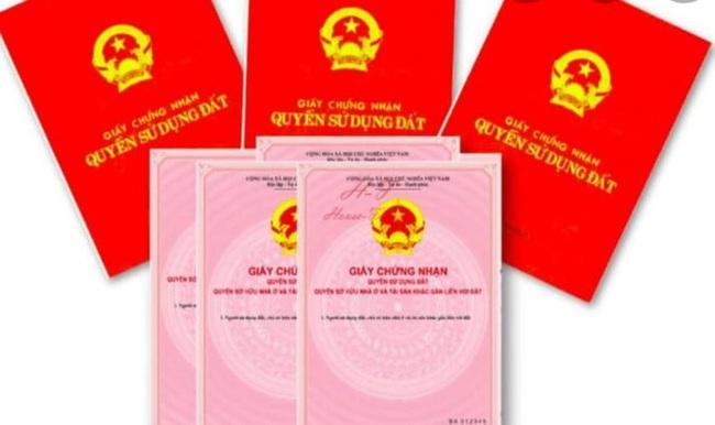 Tin mới vụ chuyên viên Văn phòng đăng ký đất đai Sơn Trà cho bạn mượn 19 sổ đỏ của dân - Ảnh 1.