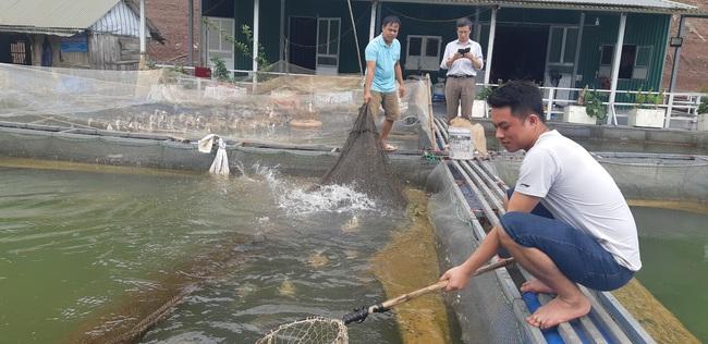 Trai Mường nổi danh nuôi cá đặc sản ở hồ Thung Nai - Ảnh 1.