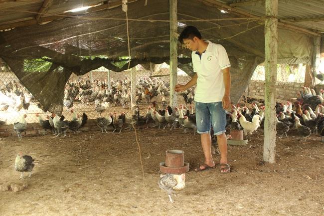 Trên 600.000 hộ nghèo Hà Nội được vay vốn ưu đãi - Ảnh 1.