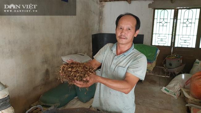 Nam Định: Cho lợn ăn sâm, thảo quả… nghe nhạc trữ tình, có bao nhiêu nhà giàu cũng khuân hết  - Ảnh 1.