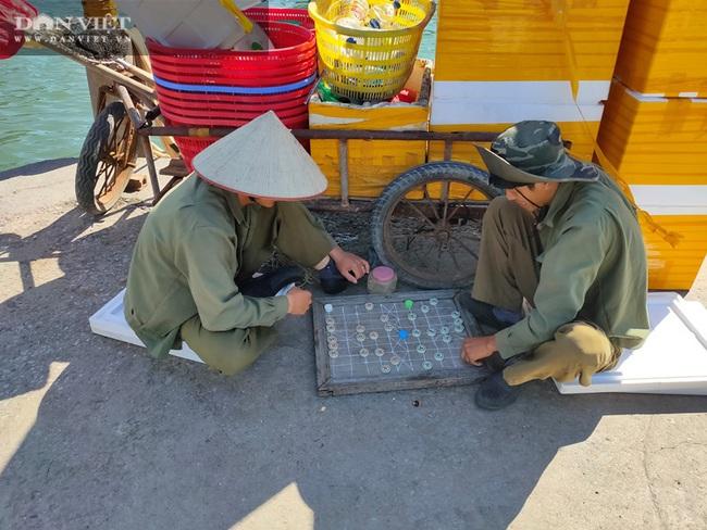 Ngao, hầu ở Vân Đồn mất giá, chủ nuôi đi câu cá để kiếm ăn - Ảnh 11.