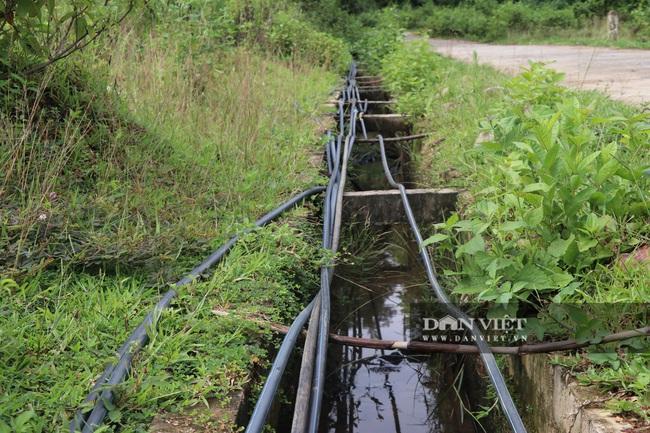 Yên Bái: Đầu tư tiền tỷ xây nhà máy nước rồi bỏ hoang - Ảnh 2.