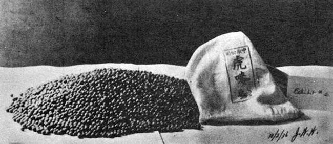 """""""Đế chế ma túy"""" phục vụ cỗ máy chiến tranh của Đế quốc Nhật - Ảnh 4."""