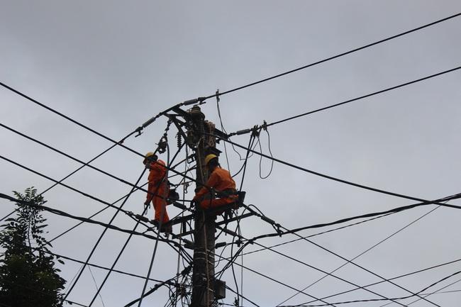 PC Gia Lai: Đầu tư hơn 46 tỷ đồng nâng cấp lưới điện khu vực thành phố Pleiku - Ảnh 3.