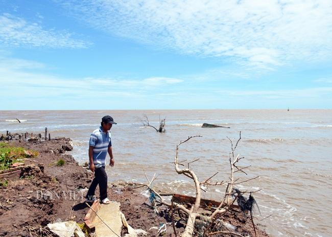Cà Mau: Kế hoạch ứng phó với biến đổi khí hậu với kinh phí trên 19.000 tỷ đồng - Ảnh 1.