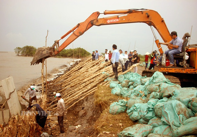 Cà Mau: Kế hoạch ứng phó với biến đổi khí hậu với kinh phí trên 19.000 tỷ đồng - Ảnh 2.