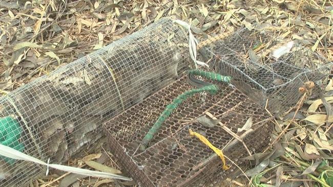 Đồng Tháp: Mùa nước nổi chưa đến nhưng chuột đồng rất nhiều, mua bán tấp nập - Ảnh 4.