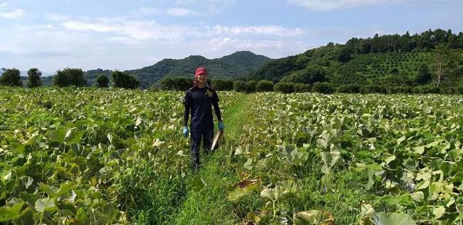 Lao động Việt tại Hàn Quốc: Đối mặt nguy cơ mất việc, thiếu việc làm - Ảnh 1.