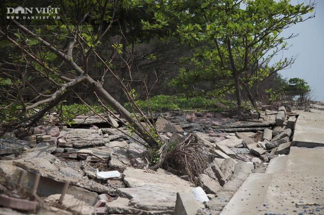 Sông Đà Hà Nội hút cát tàn phá biển tại Nam Định và những con số lớn khủng khiếp - Ảnh 4.