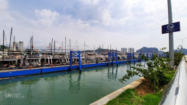 Kích cầu du lịch Quảng Ninh: Đề xuất tăng thời gian thăm vịnh Hạ Long thêm 4 giờ  - Ảnh 1.