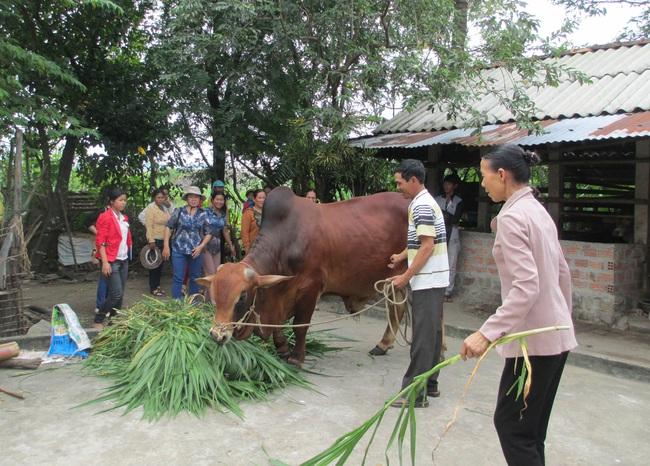 Xây dựng nông thôn mới ở Quảng Ngãi: Đời sống nâng cao, làng xã thêm văn minh... - Ảnh 1.