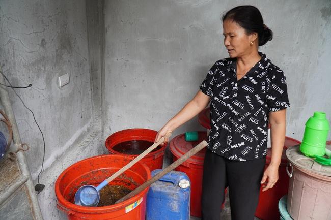 """Bắc Ninh: Biến rác bếp, rác chợ thành phân hữu cơ, tưới đường hoa, ruộng lúa, rau xanh mướt, ăn """"ngon, giòn và an toàn"""" - Ảnh 1."""