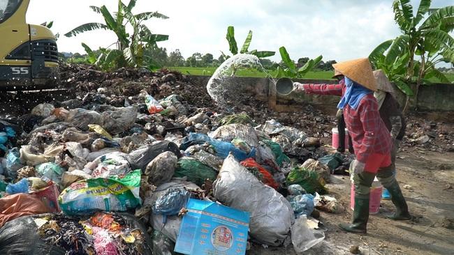 """Bắc Ninh: Biến rác bếp, rác chợ thành phân hữu cơ, tưới đường hoa, ruộng lúa, rau xanh mướt, ăn """"ngon, giòn và an toàn"""" - Ảnh 6."""