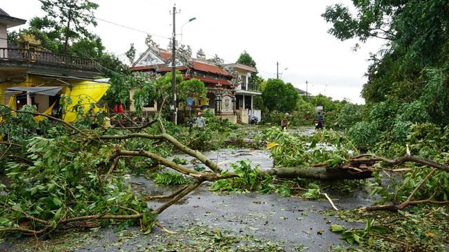 Chùm ảnh: Nhà dân tốc mái và cây xanh, trụ điện gãy đổ hàng loạt ở Huế  - Ảnh 1.