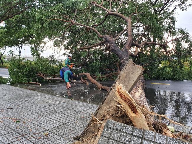 Đà Nẵng: Đường ngập, cây gãy cành đè nhà người dân do ảnh hưởng bão số 5 - Ảnh 6.