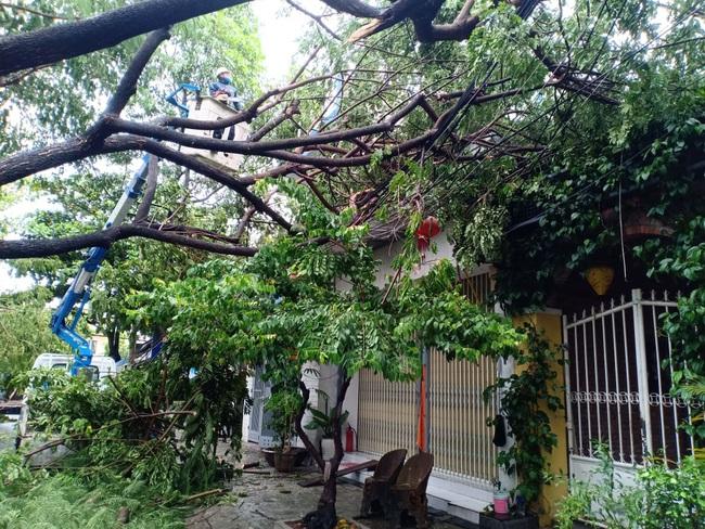 Đà Nẵng: Đường ngập, cây gãy cành đè nhà người dân do ảnh hưởng bão số 5 - Ảnh 7.