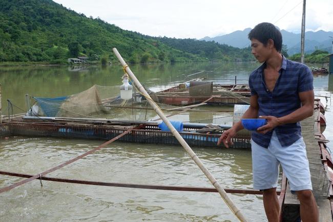 Được giúp vốn và kỹ thuật, yên tâm nuôi cá đặc sản - Ảnh 3.