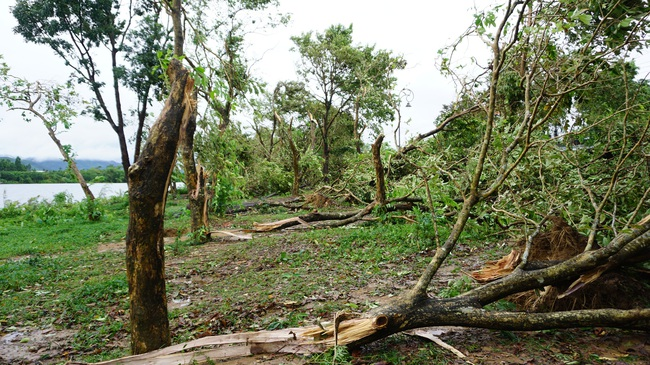 Huế báo cáo thiệt hại bão số 5, người thương vong và nhà cửa hư hại tăng mạnh  - Ảnh 4.