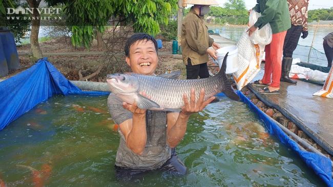 """Nam Định: Nuôi đủ các loại cá, """"ẵm"""" hơn nửa tỷ đồng chỉ sau 300 ngày - Ảnh 2."""